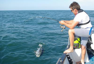 Pêche thon